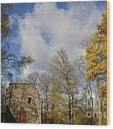 Old Sigulda Castle Ruins Wood Print