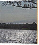 On A Glistening River Wood Print