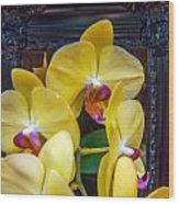 Orchid Flowers Growing Through Old Wooden Picture Frame Wood Print