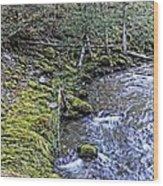 Oregon Wood Print