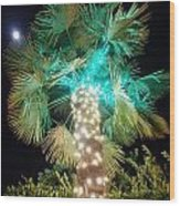 Outdoor Christmas Decorations Wood Print