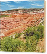 Painted Desert National Park Panorama Wood Print