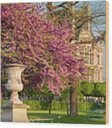 Paris Springtime Wood Print