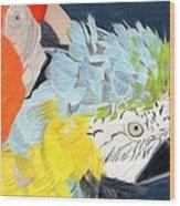 2 Parrots Wood Print by Bav Patel