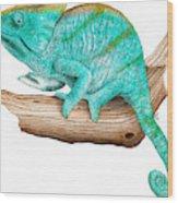 Parsons Chameleon Wood Print