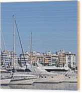 Pasalimani Port Wood Print