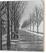 Path Through Fog Wood Print