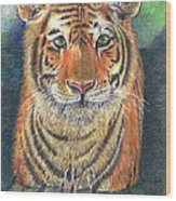 Patient Hunter Wood Print