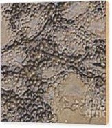 Patterns In Dolostone Coastal Rocks Wood Print