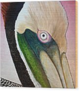 Pelican Peeking Wood Print