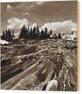 Pemaquid Rocks Wood Print by Skip Willits