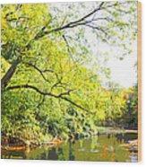 Pennsylvania Autumn Pennypack Creek Philadelphia Pennsylvania Wood Print
