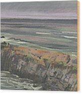 Pescadero Beach Wood Print