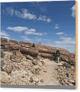 Petrified Forest, Argentina Wood Print