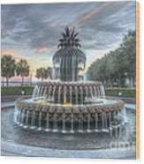 Majestic Sunset In Waterfront Park Wood Print