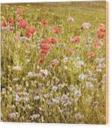 Poppies Wood Print