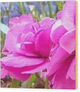 Pretty Pink Flower Wood Print