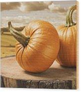 Pumpkins Wood Print by Amanda Elwell