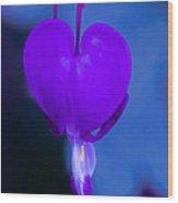 Purple Bleeding Heart Flower Wood Print