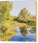 Quiet River In The Park Wood Print