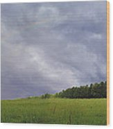 Rainbow After A Storm Wood Print