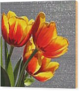 Red And Yellow Tulip's In A Window Wood Print by Robert D  Brozek
