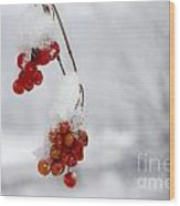 Red Fruit With Snow Wood Print