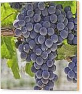 Red Wine Grapes Wood Print