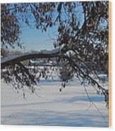 Redbud Tree In Winter Wood Print