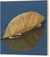 Reflection Of Fall Wood Print