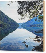 Reflection On Lake Crescent Vertical Wood Print