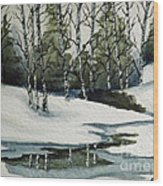 Reflections Of Winter Wood Print