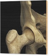 Right Hip Joint Male Wood Print