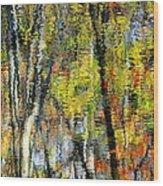 Rippley Reflection Wood Print