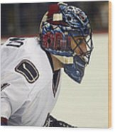 Roberto Luongo Wood Print by Don Olea