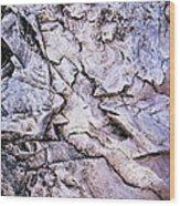 Rocks At Georgian Bay Wood Print