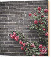 Roses On Brick Wall Wood Print