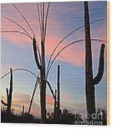 Saguaro Silhouettes Wood Print
