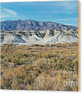 Salt Creek Death Valley National Park Wood Print
