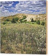Sand Dunes In Manitoba Wood Print by Elena Elisseeva