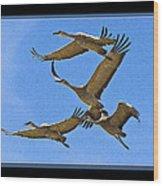 Sandhill Cranes In Flight Wood Print