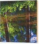 Santa Anita Creek Wood Print