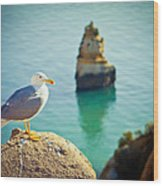 Seagull On The Rock Wood Print
