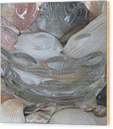 Shells In Bubble Bowl 2 Wood Print
