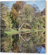 Skaryszewski Park In Warsaw Wood Print