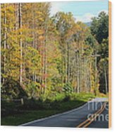 Smoky Mountain Road Trip Wood Print
