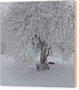 Snow And Ice Wood Print