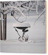 Snowy Bird Bath Wood Print