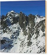 Southern Alps New Zealand Wood Print
