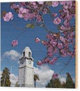 Spring Blossom And Memorial Clock Wood Print